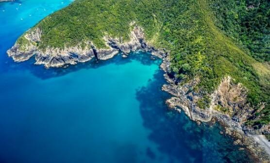 Bay of Islands Getaway (Single Traveller)