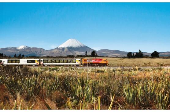North Island Coach & Rail Holiday (Single Traveller)