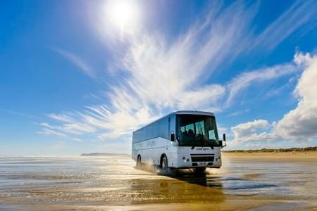 Bus Flexi Pass