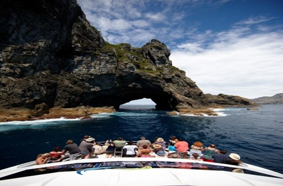 Bay of Islands Day Tour & Hole in the Rock Dolphin Cruise ex Auckland Return