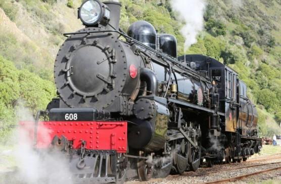 Steam Train Tour - Picton-Blenheim-Picton